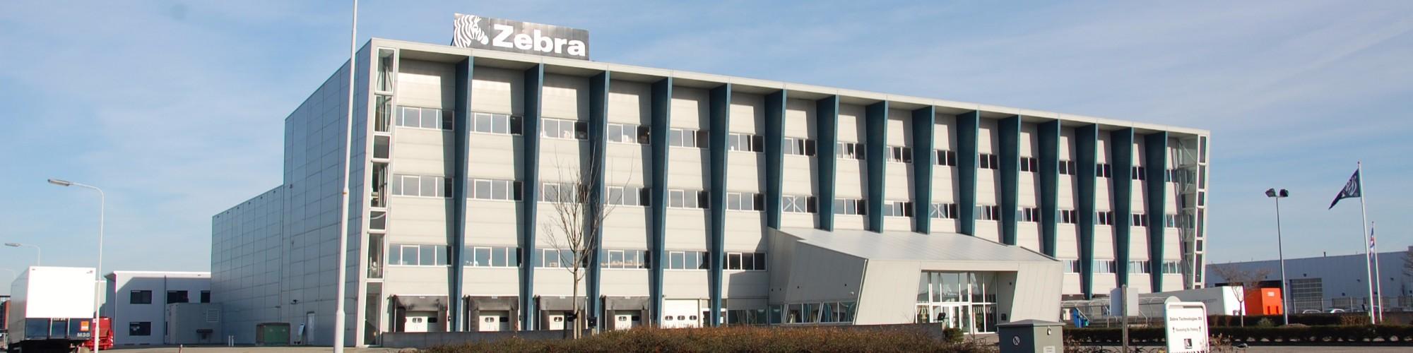 Zebra - Heerenveen.JPG